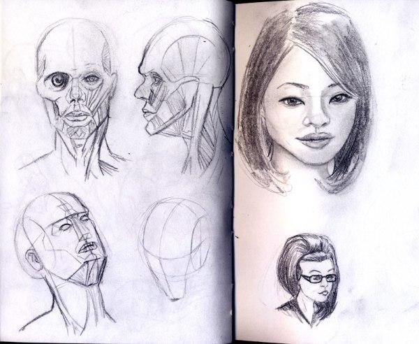 2013-01-04_head-studies