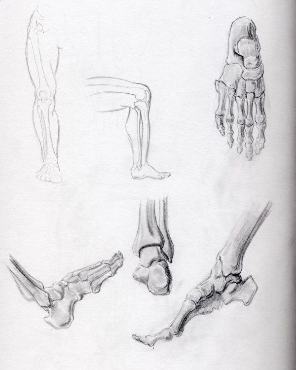2013-03-22_foot-studies