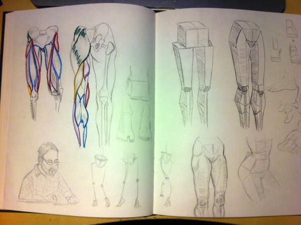2013-09-23_anatomy-studies01