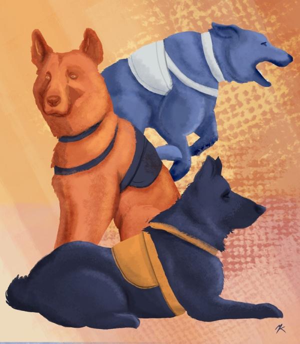 2013-11-04_policedogs